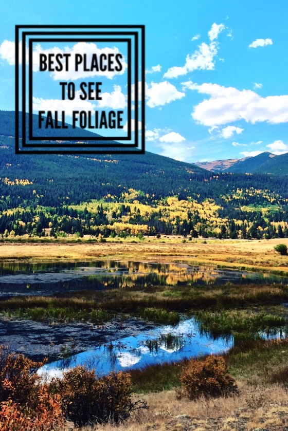 Best Places to See Fall Foliage | www.paisleyandfig.com